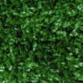 Rental store for Tapis Gazon 6 x8  Grass Carpet 6 x8 in Montreal Quebec